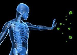 Vitamins for Immune Support